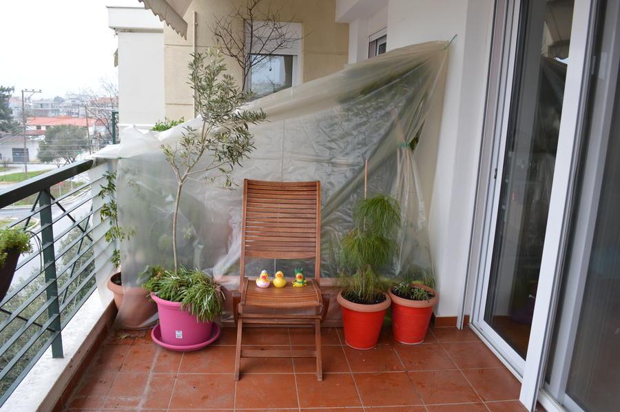 Θερμοκήπιο στο μπαλκόνι