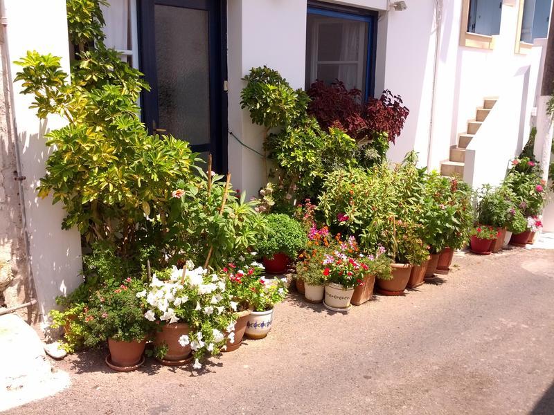 Κήπος στα Κύθηρα