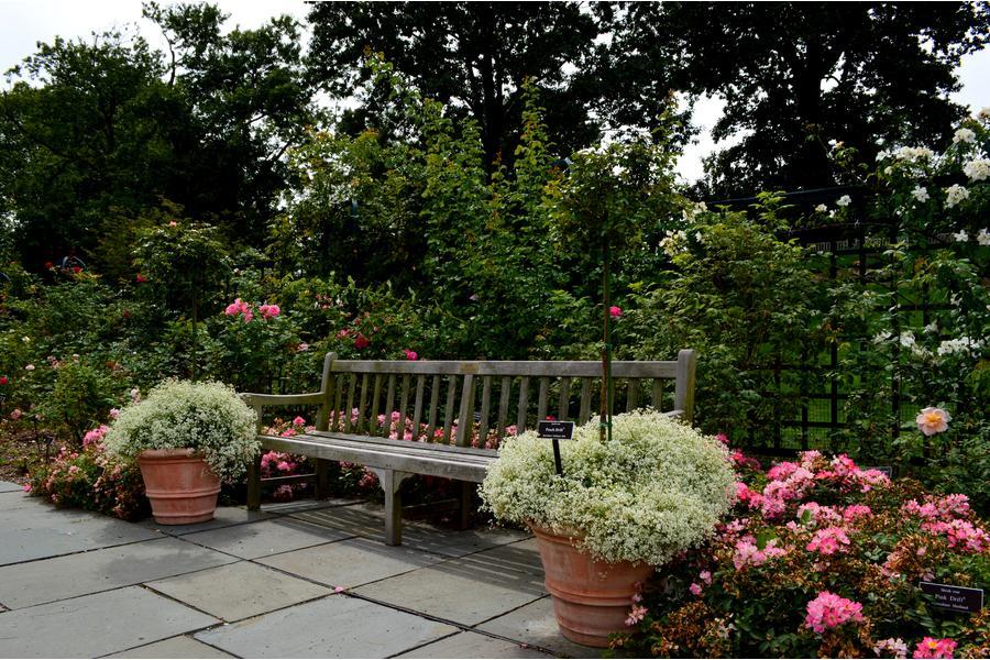 Βοτανικός Κήπος Νέας Υόρκης