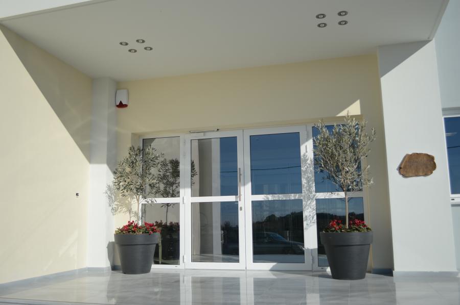 Γλάστρες σε είσοδο εταιρίας